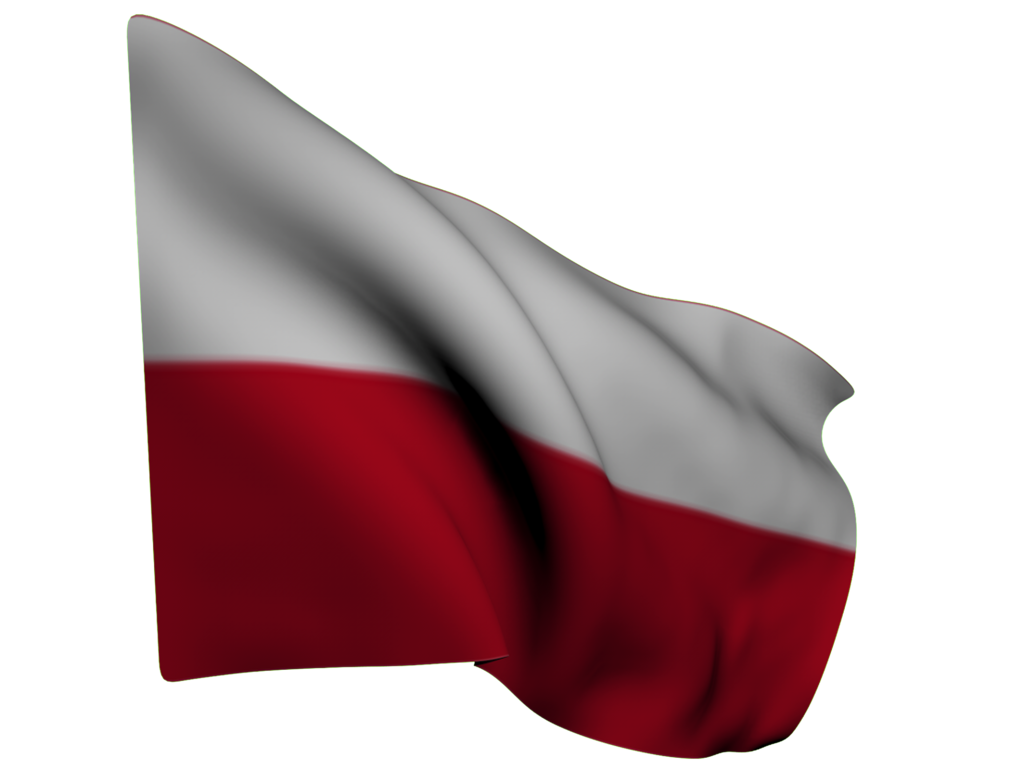 flag-2303606_1920(1).png